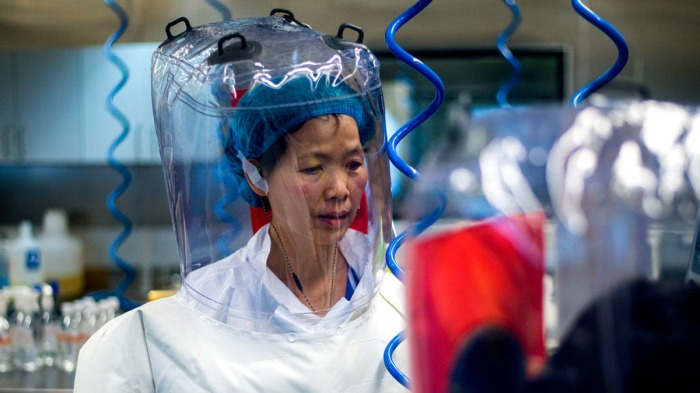 Bat Lady Chinese Scientist in Hazmat Suit