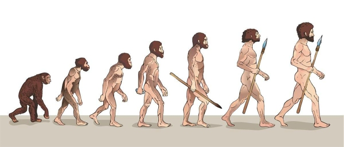 Human History - March of Progress from Ape to Human