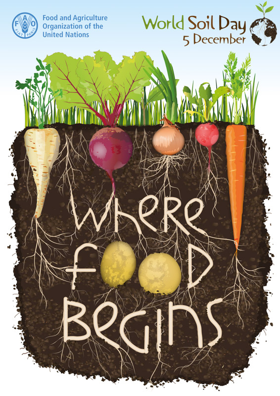 "World Soil Day Poster ""Where Food Begins"""