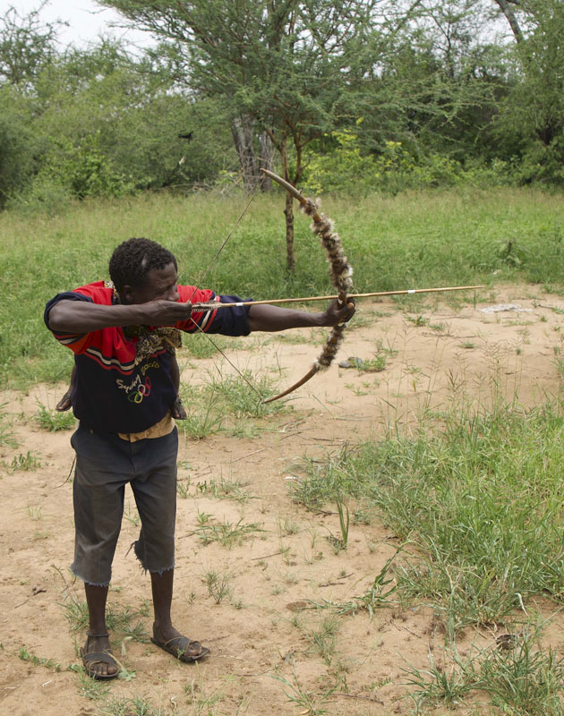 Bow and Arrow - Hadza archer aiming his bow