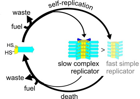 "Lifeless Matter Flow Diagram Showing ""Death"" Selecting ""Slow, Complex Replicator"""