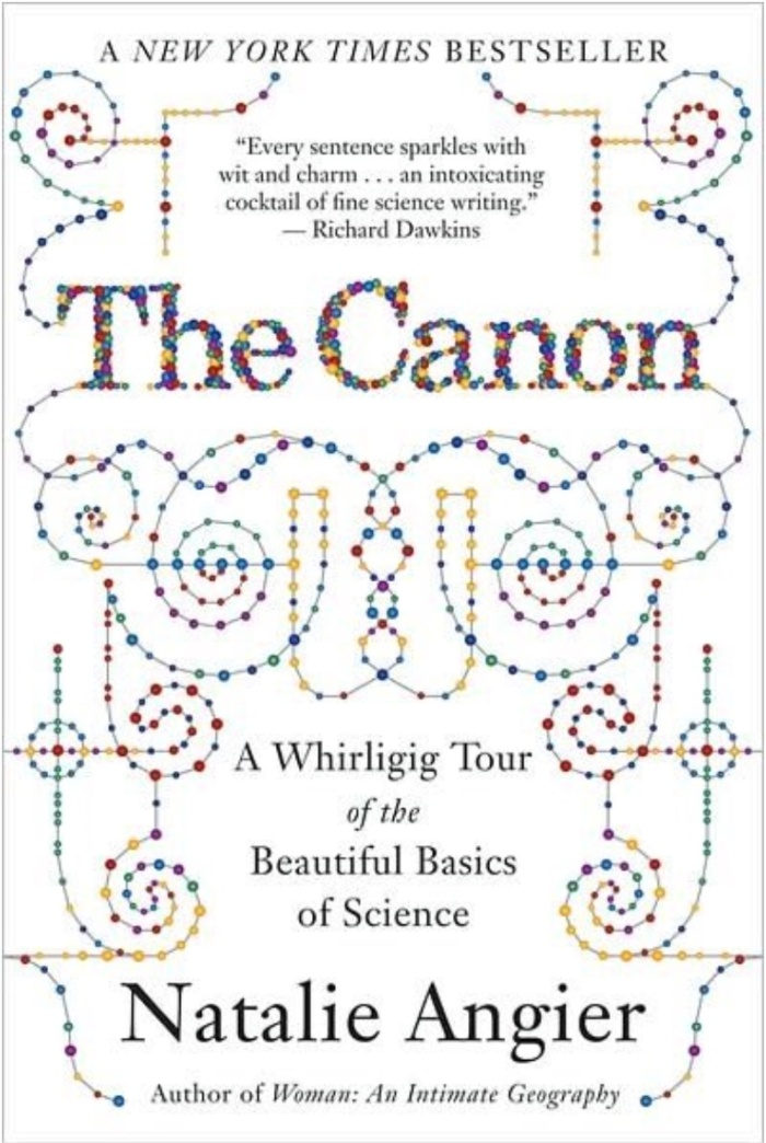 The Canon book cover with needlepoint design